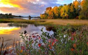 landscape-4535199_1920